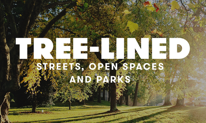Streets and open spaces